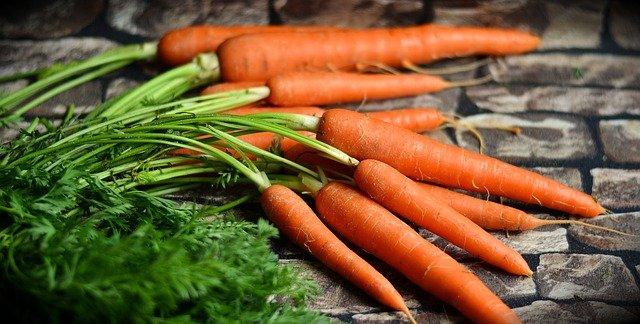 Karotten Haltbarkeit und Lagerung